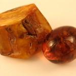 Hổ Phách – Amber   Viên đá tích tụ tinh hoa đất trời